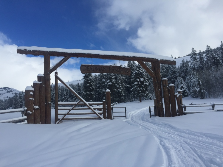 Ranch gate along 2016 Eukanuba Stage Stop trail