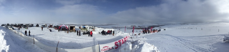 Kemmerer start line, 2016 Eukanuba Stage Stop sled dog rage